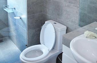 Toilet Renovation